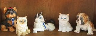 dogcat2.jpg